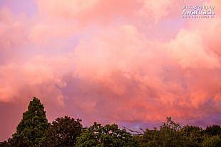 Zonsondergang Brik, Hoorn
